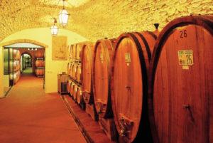 Экскурсия по «Центру культуры вина Шабо» c дегустацией