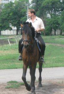 Конные прогулки в Одессе